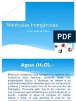 Moléculas Inorgánicas.pptx