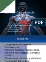Fisiologia Cardiaca NUEVA 2014