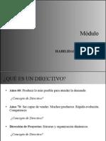 Habilidades director de proyecto