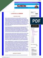 CABILDO - Por La Nación Contra El Caos Cfb