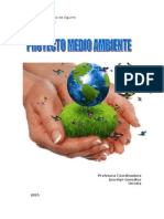 Proyecto m Ambiente