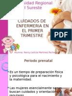 trimestres del embarazo