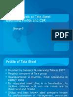 Tight Rope Walk of Tata Steel
