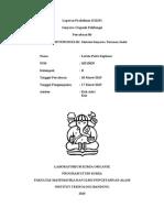 150317-Laporan Praktikum KI2251-Sintesis Senyawa Turunan Indol