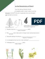 1 - Plant Characteristics Worksheet