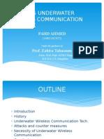 Securing Underwater Wireless Communication Network