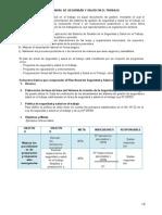 Estructura Plan Anual de HSE 29783