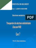 Curs 07 Cit P450.pdf