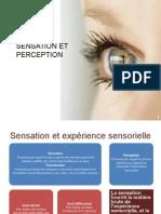Senshhation Et Perception h20