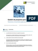 Cynertia - Gestion Proyectos Pymes - 2010