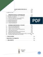 sistemadegestindelacalidadfinalgases-111207122551-phpapp01