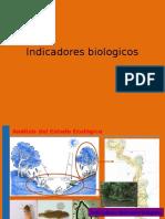 7.- indicadores biologicos 1.ppt