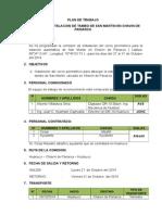 Plan de Trabajo Comision Tambo de San Martin