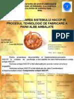 143214075-haccp-paine