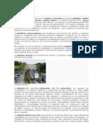 Impactos Ambientales Carreteras y Caminos