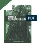 Pobreza y medio ambiente en México