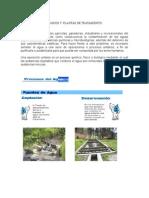 Procesos Planta Cariongo(1) (1)