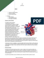 Cardiologia - Resumo Completo