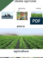 Actividades agrícolas