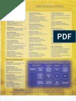 Programa Mag Psico Clinica
