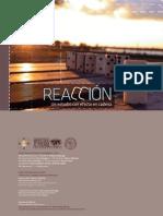 Reaccion - Un Estudio Con Efecto de Cadena