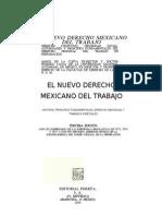 TEMA III. LAS FUENTES FORMALES Y LA INT ERPRETACIÓN DEL DERECHO DEL TRABAJO.docx