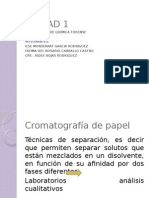 expo- cromatografia.pptx