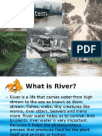 river ecosystem (ppt)
