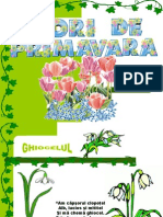 1_florideprimavara