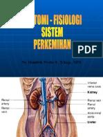 anatomi fisiologi perkemihan