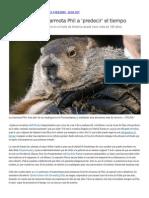 Historia de La Marmota Phil