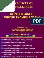 REPASO-EXAMEN_Musculoesqueletal