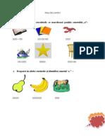 4_fise_de_lucru