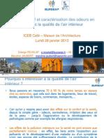 iceb_cafe_VF-28-jan-2013.pdf