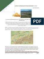 Studiu comparativ de producere si de piata pentru branza tip emmental rezumat.pdf