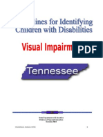 03VI TechManual Visual Imp
