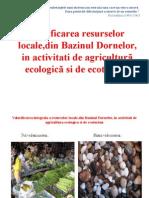 Valorificarea integrala a resurselor locale,din Bazinul Dornelor,.ppt