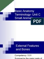 unit c 5 01 anatomy
