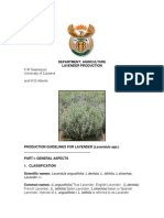 production_guideline_for_lavender_FINAL.pdf