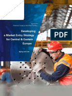 Developing a Market Entry Strategy for Cee
