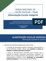 pnae_encontro-tecnico_fortaleza-ce-2014_alimentacao-escolar-indigena.pdf