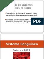 Sistema Sanguíneo 2013