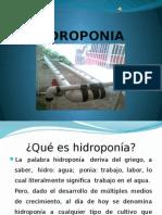 hidroponiadiapositivas2-120613183049-phpapp02