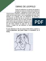 MANIOBRAS DE LEOPOLD.docx