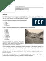 region y contexto caribe desencuentros oct 2012.docx