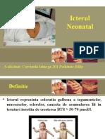Icterul Neonatal