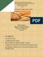 Fabricare painii reologie