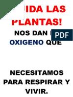 CUIDA LAS PLANTAS.docx