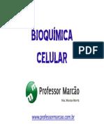bioquimica celular - 3 ano - 2015.pdf