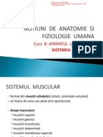 anatomie(Sistemul muscular).pdf